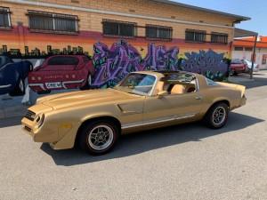 78 Camaro (1)